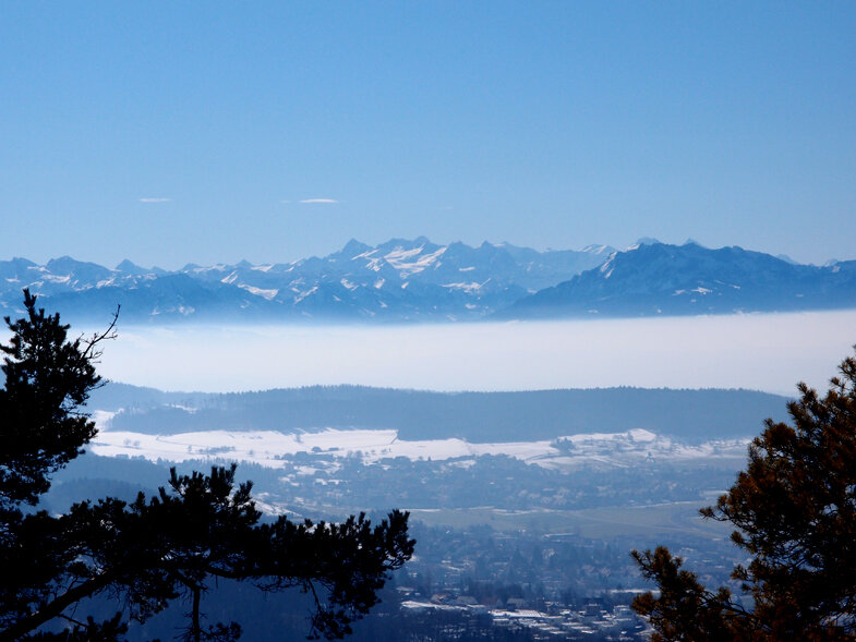 Солнечный февральский Цюрих - фотозаметки ( почти без комментариев)