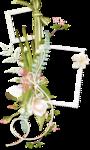 «PeachFacedLovebird» 0_82170_c207ef2c_S