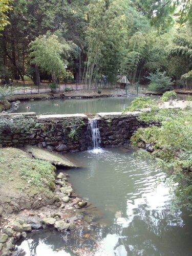 пруды Нижнего Дендрария