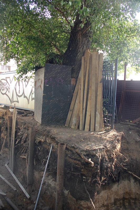 На Хитровской площади подрубили корни