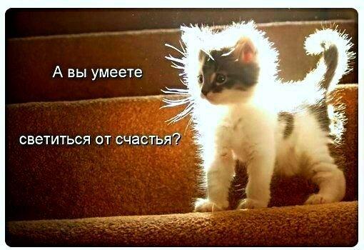 ЖЕЛАЮ  ВАМ  СВЕТИТЬСЯ  от  СЧАСТЬЯ  :-)))