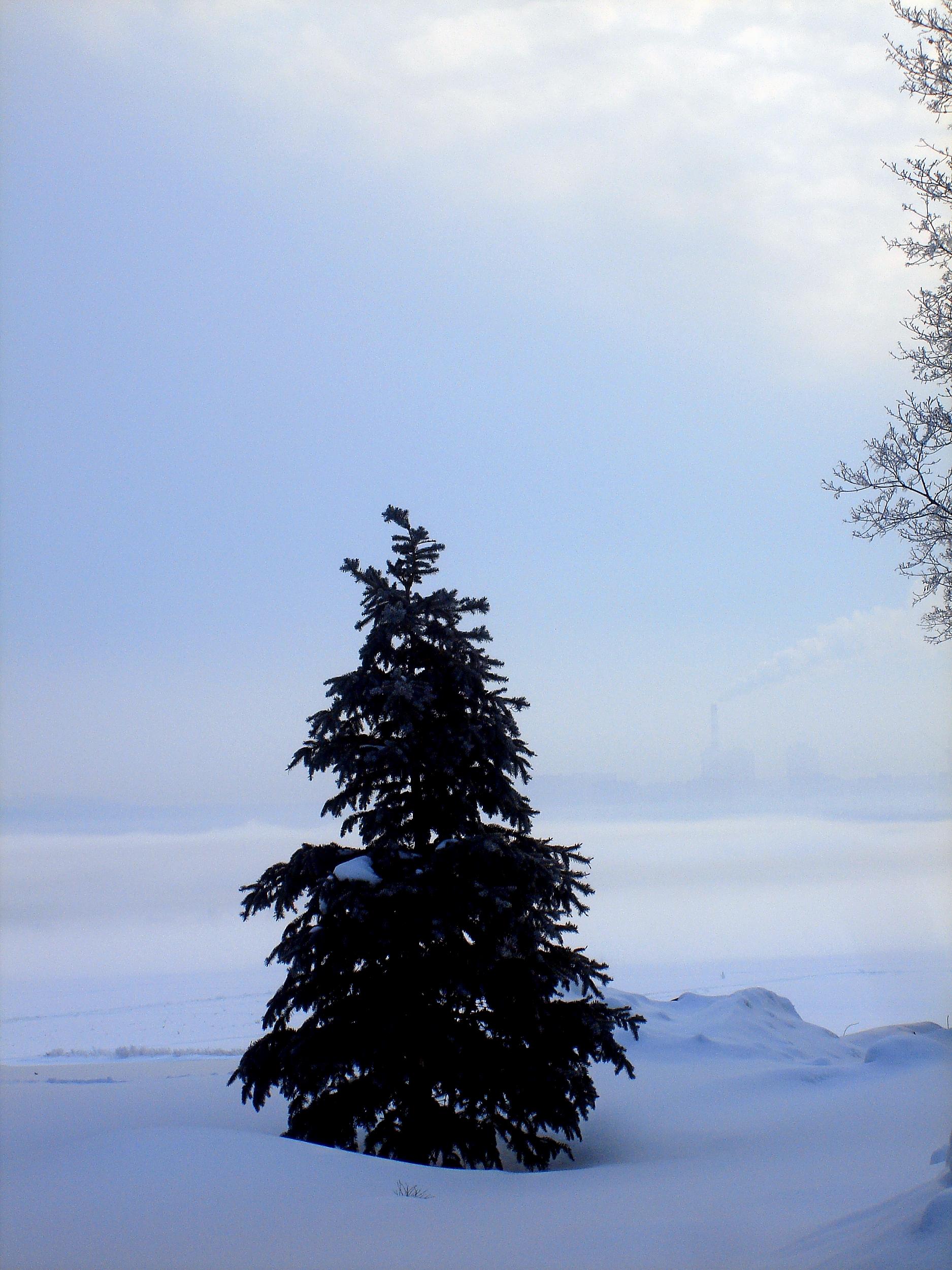 Зима-весна,с.Остров,утро марта