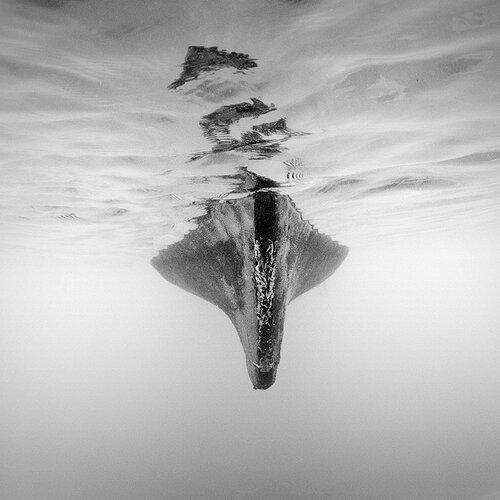 Поэзия черно-белой фотографии в работах Хенгки Коентжоро