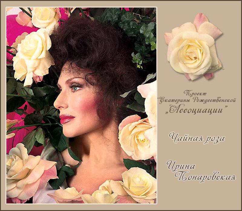 http://img-fotki.yandex.ru/get/6202/121447594.ab/0_806ca_6c3509e4_XL.jpg