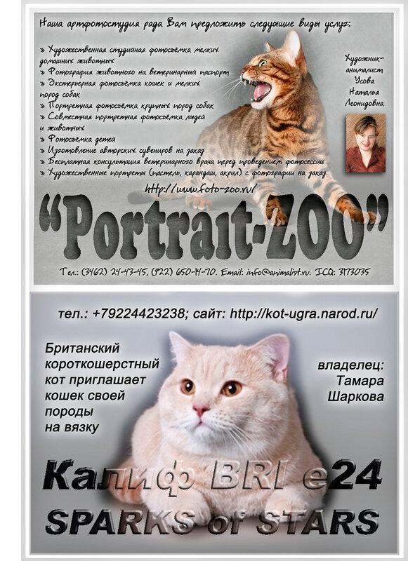 http://img-fotki.yandex.ru/get/6202/123262551.3/0_70028_e0f9bdc3_XL.jpg
