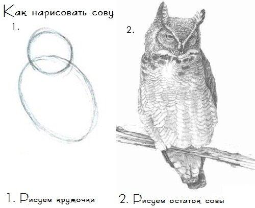 http://img-fotki.yandex.ru/get/6202/26873116.6/0_74503_7274d865_L.jpg