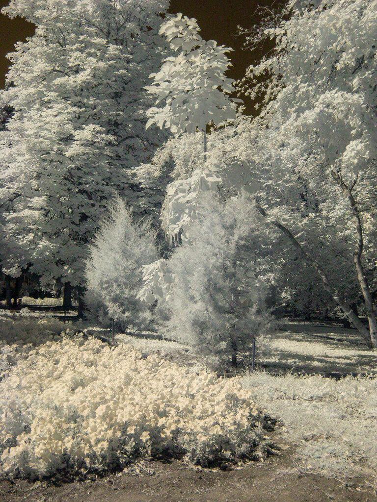 Инфракрасный Саратов