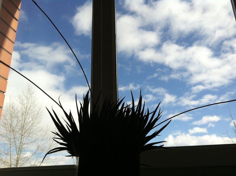 Оммаж Матгритту. На фоне мартовского неба