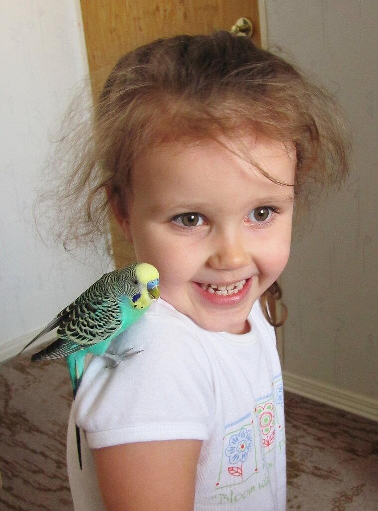 Юная дама с попугаем