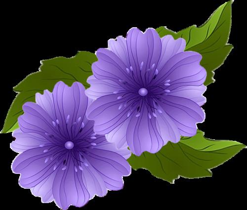 цветы фото картинки нарисованные