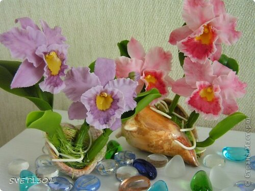 орхидеи из фарфора