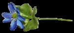 "Скрап набор ""цветочная улыбка"" 0_74047_24c06f37_S"
