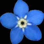"""Скрап набор """"цветочная улыбка"""" 0_7406b_b967d474_S"""
