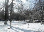 Март, в парке
