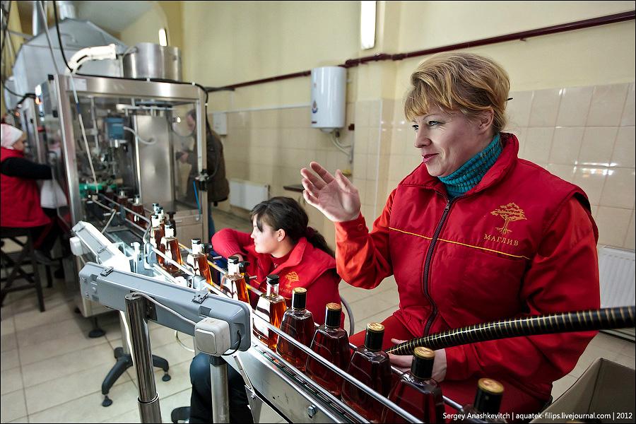 Коньячный завод
