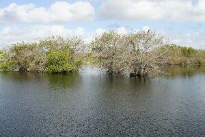 Озера Флориды