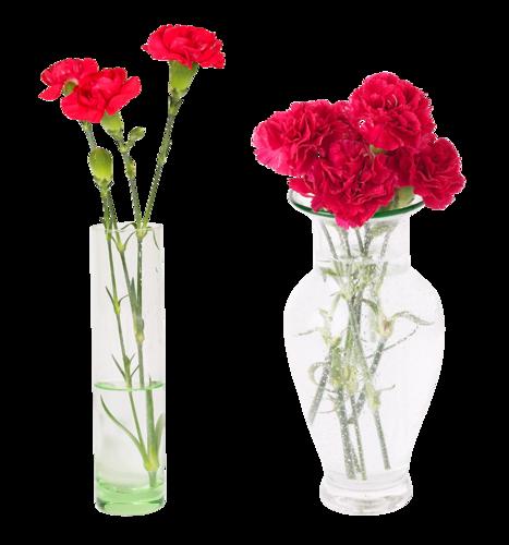fleur dans vase et pot et panier. Black Bedroom Furniture Sets. Home Design Ideas