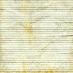 NLD I Sea You Paper (10).jpg
