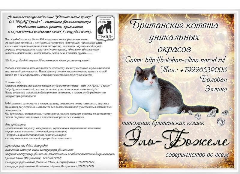 http://img-fotki.yandex.ru/get/6203/123262551.3/0_70025_d1e8626c_XL.jpg