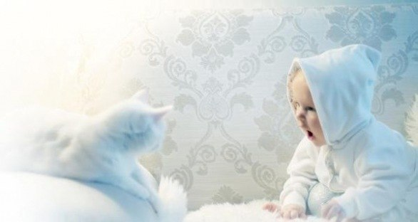 http://img-fotki.yandex.ru/get/6203/130422193.f7/0_77971_300bf11d_orig