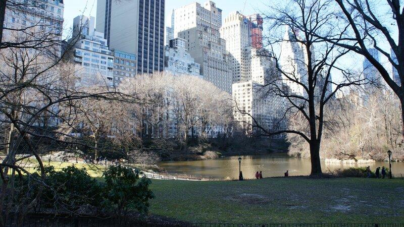 манхеттен, парк