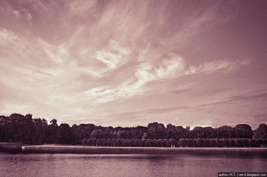 Небо над парком.