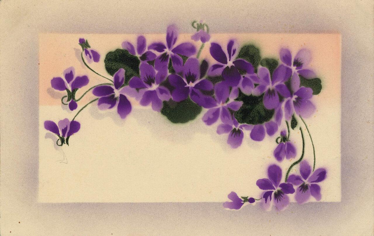Открытки с фиалками на юбилей, открытка картинки