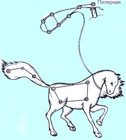 Созвездие Конь