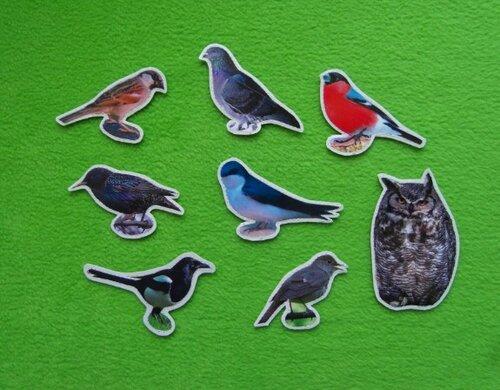 Детский календарь своими руками. Птицы. Карточки снабжены липучкой