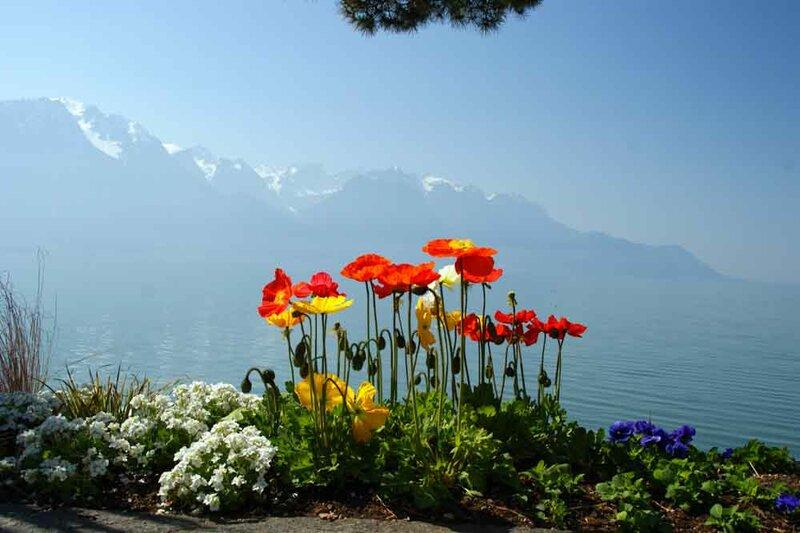 Монтрё Швейцария