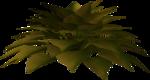 зелень 3d