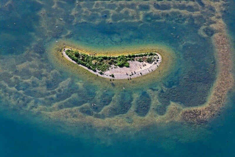 Vogelinsel im Baggersee