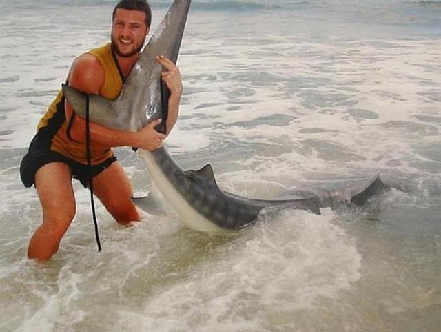 Австралиец поймал акулу голыми руками 0 e1694 74b1c7d3 orig