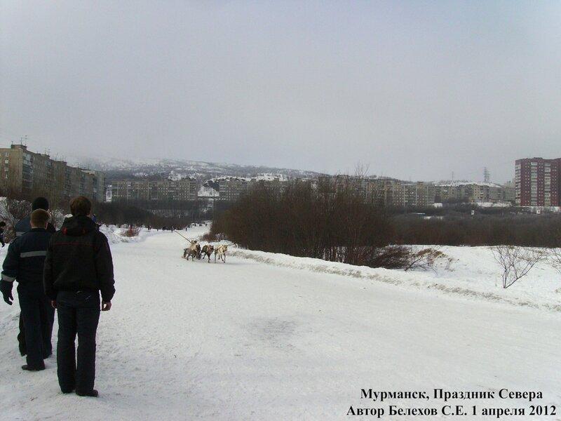 праздник севера