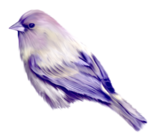 птица39.png