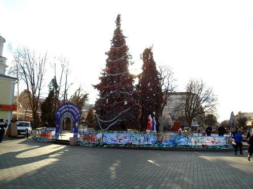 Украина. Луцк. Рождественская елка
