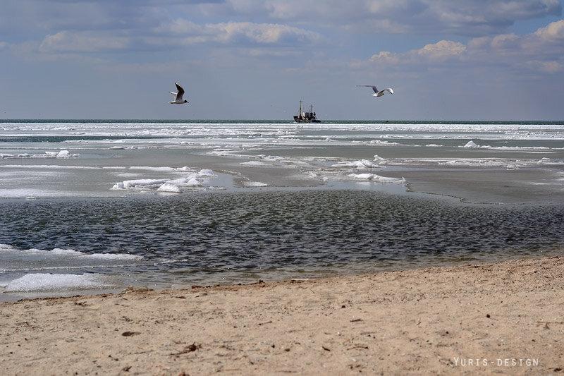 весна март Бердянск фото 2012, азовское море, yuris-design