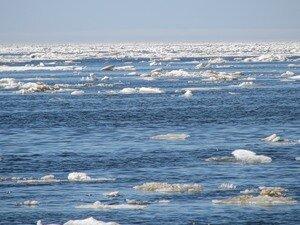 Лодка морских охотников столкнулась с льдиной на Чукотке, два человека погибли