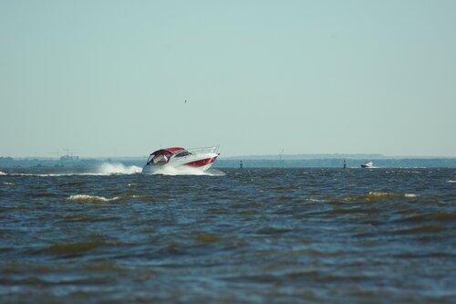 лето на финском заливе