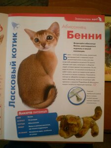 The Cat Collection №16 Абиссинская кошка Фото