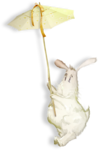 NLD Bunny with umbrella sh.png