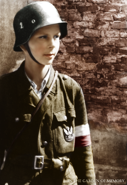 young_insurgent_by_olgasha.png
