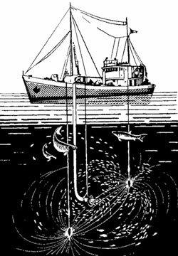 Электричество в рыболовстве