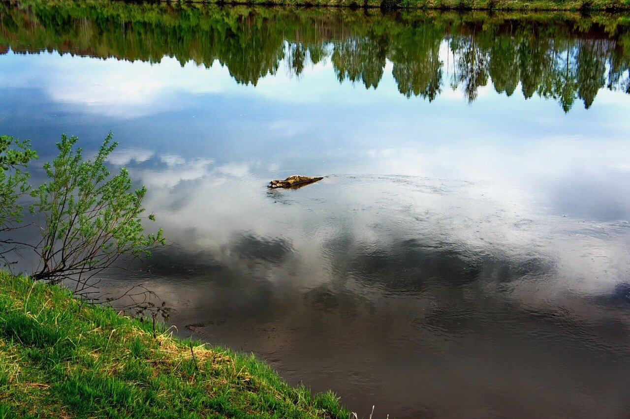 яндекс фотки река