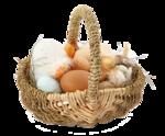 easter basket_03.png