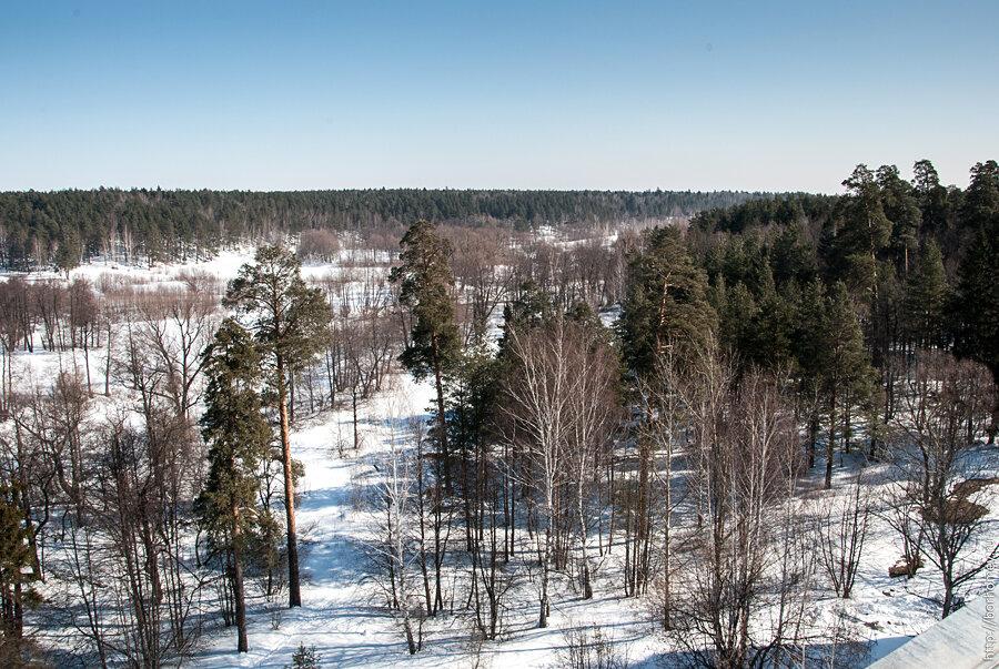 речка и лес за музыкальной школой