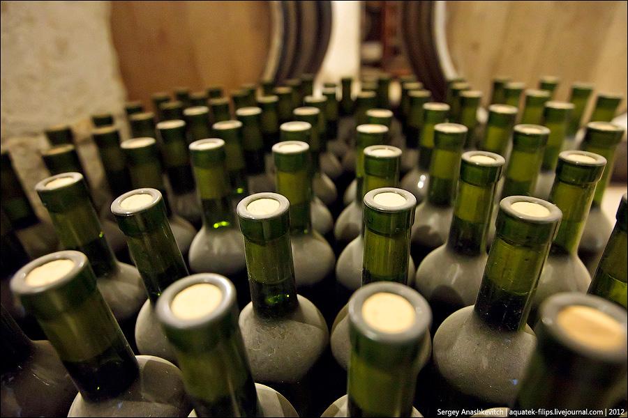 Wine Day