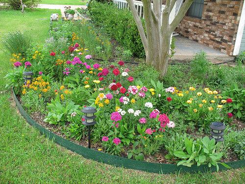 схемы цветников из многолетников.