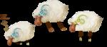 NLD Sheeps sh.png