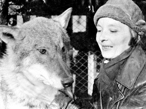 Вера Чаплина с волком Арго. Московский зоопарк, вторая половина 1930-х